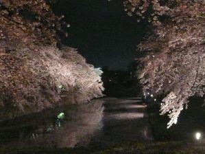 Hirosaki2008day11